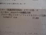 DSC07554.JPG